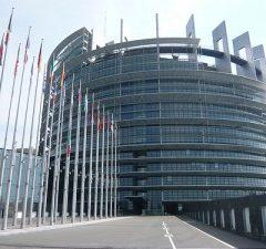 Qui Strasburgo: un giorno in sessione plenaria del Parlamento europeo