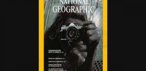 """Il""""National Geographic""""fa 130 anni: il fascino discreto della geografia"""