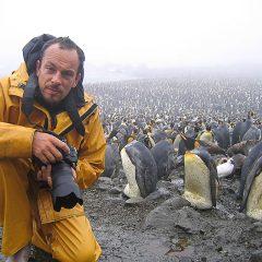 Stefano Unterthiner, il fotografo che sussurra ai cigni