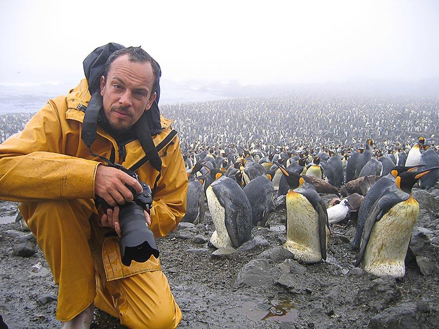 Stefano Unterthiner, il fotografo <br />che sussurra ai cigni, <br />in mostra nella Valle d'Aosta