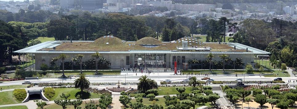 """La California Academy of Sciences di San Francisco ha una storia antica, gloriosa e curiosa. Nacque nel 1850 in forma di veliero: si chiamava """"Academy"""" e d'estate navigava verso le isole Galapagos per raccogliere specie rare; d'inverno attraccava in porto per trasformarsi in una esposizione galleggiante. L' affascinante tetto """"verde"""" voluto da Renzo Piano sull'edificio è una continuazione del parco del Golden Gate, un terreno ondulato su cui cresce una fitta vegetazione che restituisce al parco la sua identità primitiva. Ricostruisce la flora della California com'era oltre duecento anni fa, prima della conquista del West."""