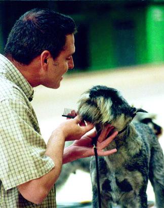 Hector Benozio con uno dei cani Schnauzer in sua custodia e che costituisce argomento della trattativa dei legali: «Fernando può venire a visitarli».