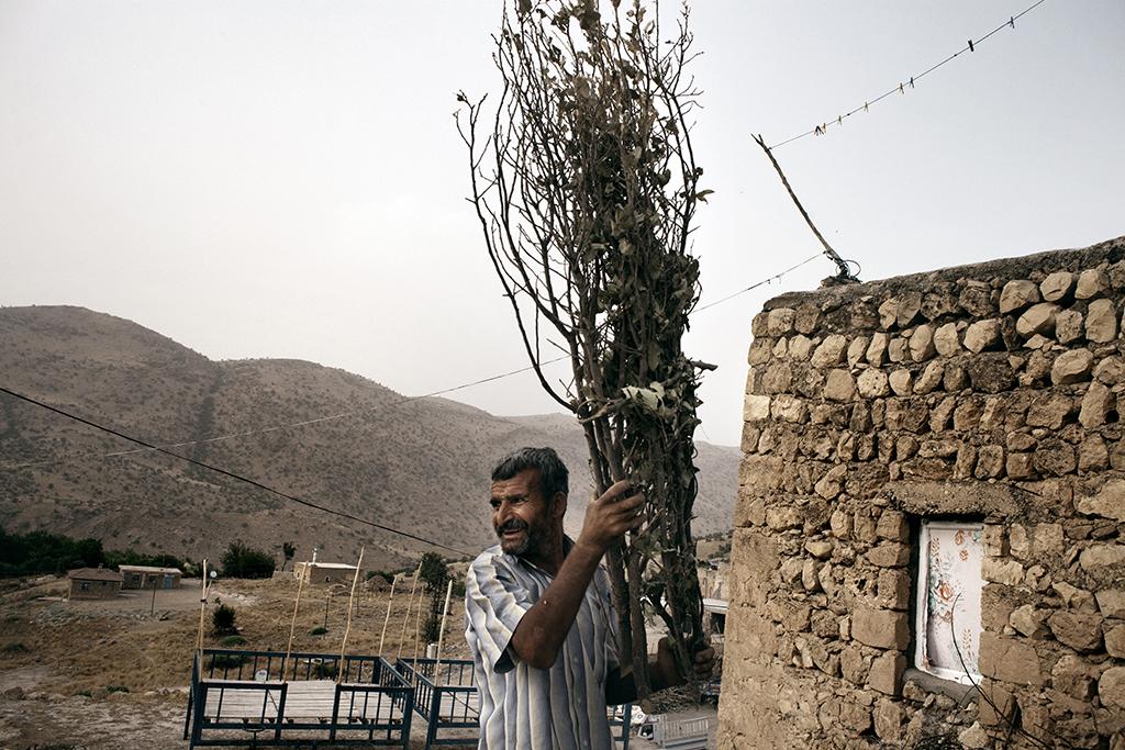 Un contadino curdo del villaggio di Incirli, provincia di Batman. La costruzione della diga di Ilisu porterà alla perdita dei suoi campi e al conseguente dislocamento verso altre aree. Ancora non ha ricevuto dal governo alcuna notifica di dislocamento, ne alcuna forma di risarcimento o compensazione per la future perdita delle proprie terre.