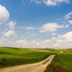 A piedi sulla Francigena, strada della fede