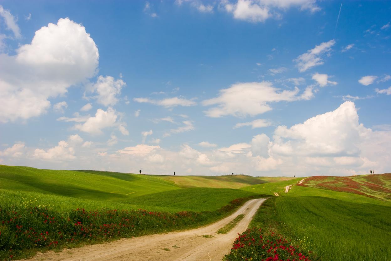 A piedi sulla Francigena, <br />strada della fede