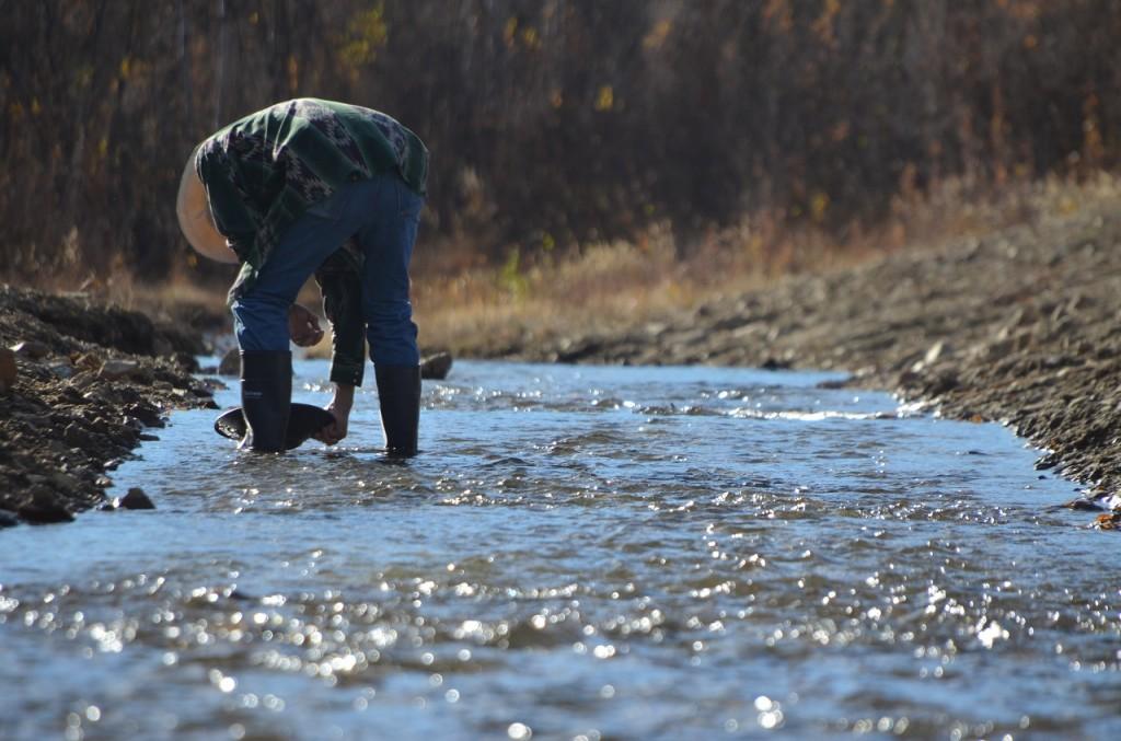 Il Pedro Creek, ancora oggi visitato da appassionati cercatori di pepite