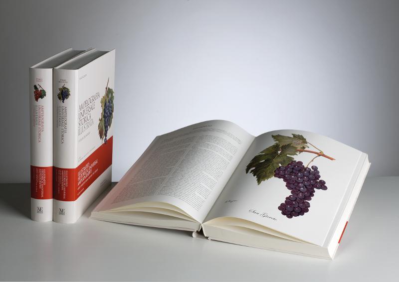 """L'Ampelografia Universale Storica Illustrata. L'opera si è aggiudicata il 1° premio nella categoria """"Professionals"""" alla Paris Cookbook Fair 2012"""