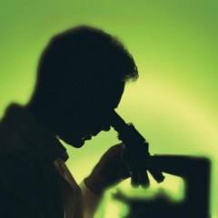 Un esame del sangue per prevenire l'Alzheimer