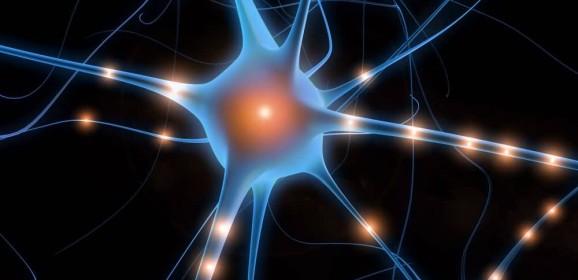 """Ricerche sul cervello: Giacomo Rizzolatti, scopritore dei neuroni specchio, vince """"The Brain Prize"""" 2014. Aveva spopolato suGiannella Channel"""