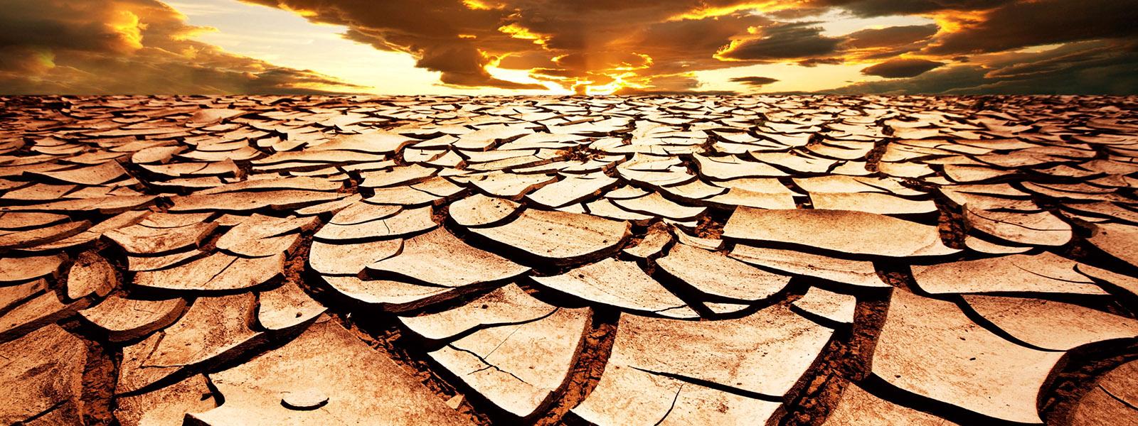 La paura oscura della fame futura, tra certezze infondate di sciamani e gli scienziati messi in un angolo