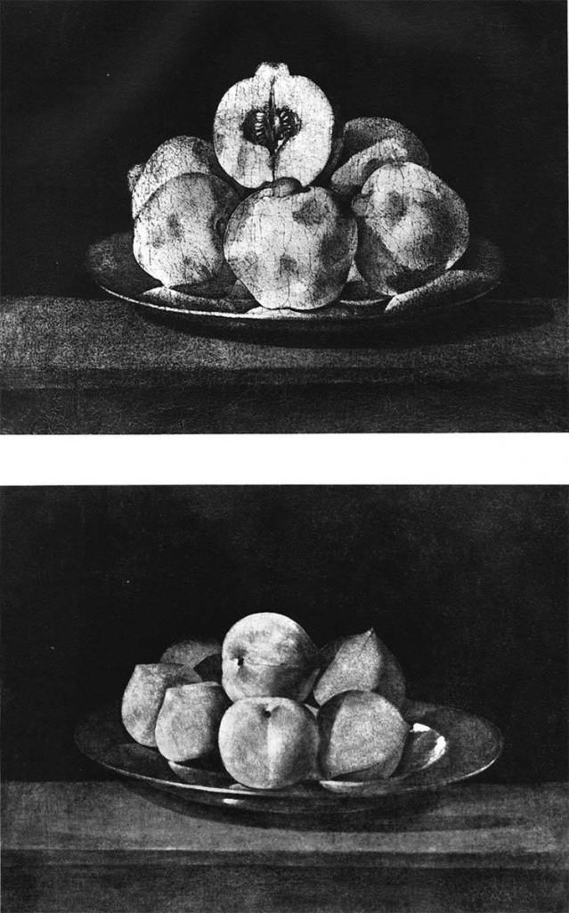natura-morta-olio-tela-francisco-zurbaran-1598-1664-collezione-contini-bonacossi-firenze