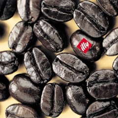 Il caffé etico nel mondo? Per il terzo anno parla in italiano e viene da Trieste