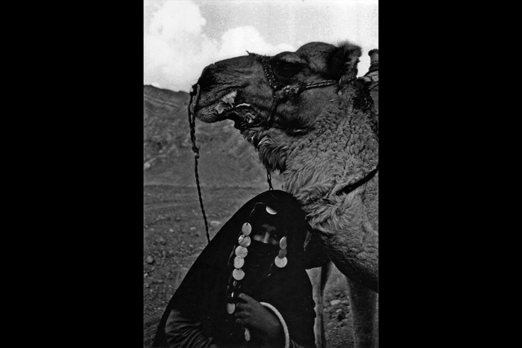 elisa-leonelli-camel