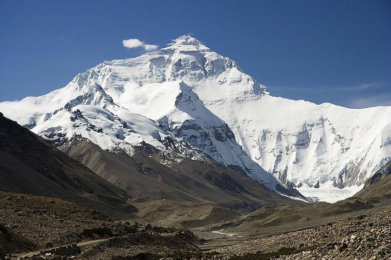 WWF, scoperte 211 nuove specie sull'Himalaya