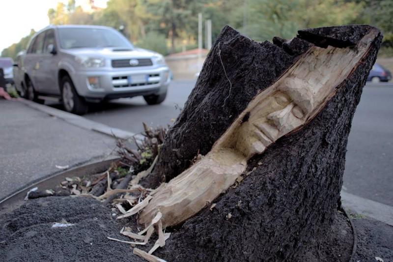 Roma, giovane artista incide i tronchi: <br />così gli alberi morti tornano a vivere