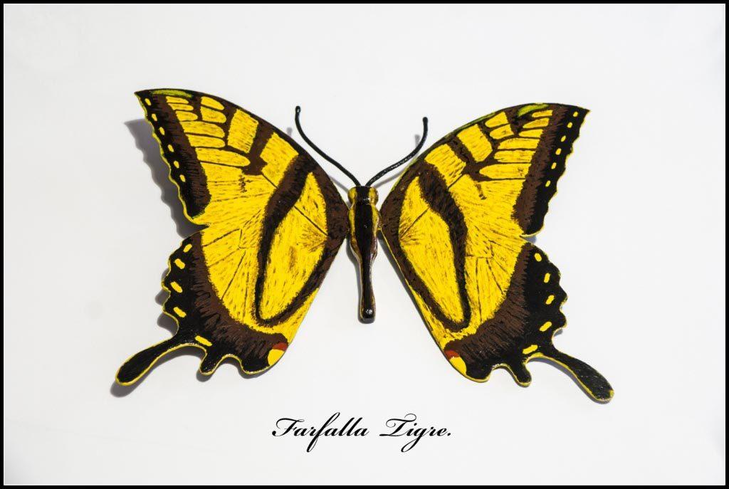 artista-modellazione-farfalle-romagna