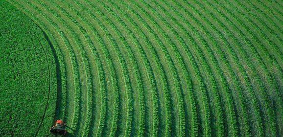 Banca della terra: migliaia di ettari incolti destinati ai giovani agricoltori del Veneto