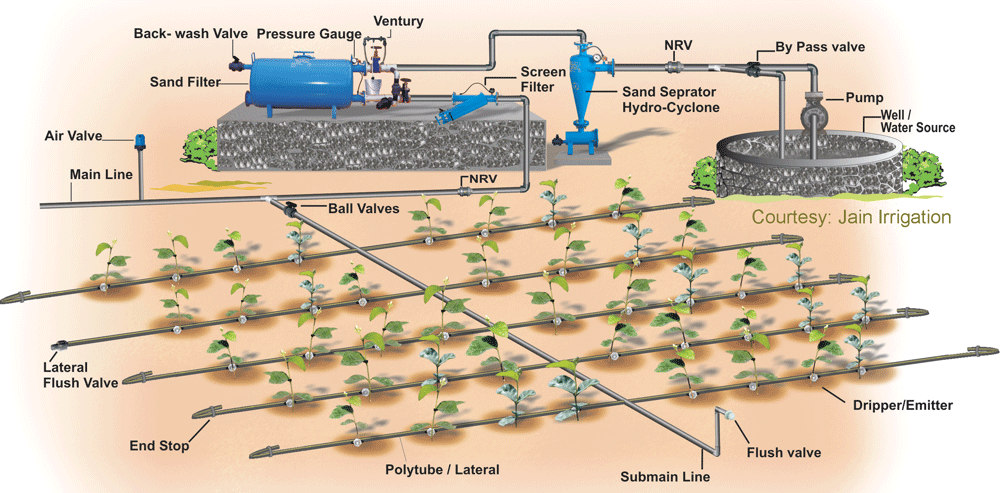 schema-sistema-irrigazione-goccia