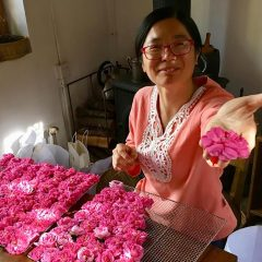 A Shaxi, nell'antica Cina dove è ritornato il profumo delle rose