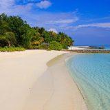 Cercasi libraio per un'isola delle Maldive: ecco i requisiti per il lavoro dei sogni