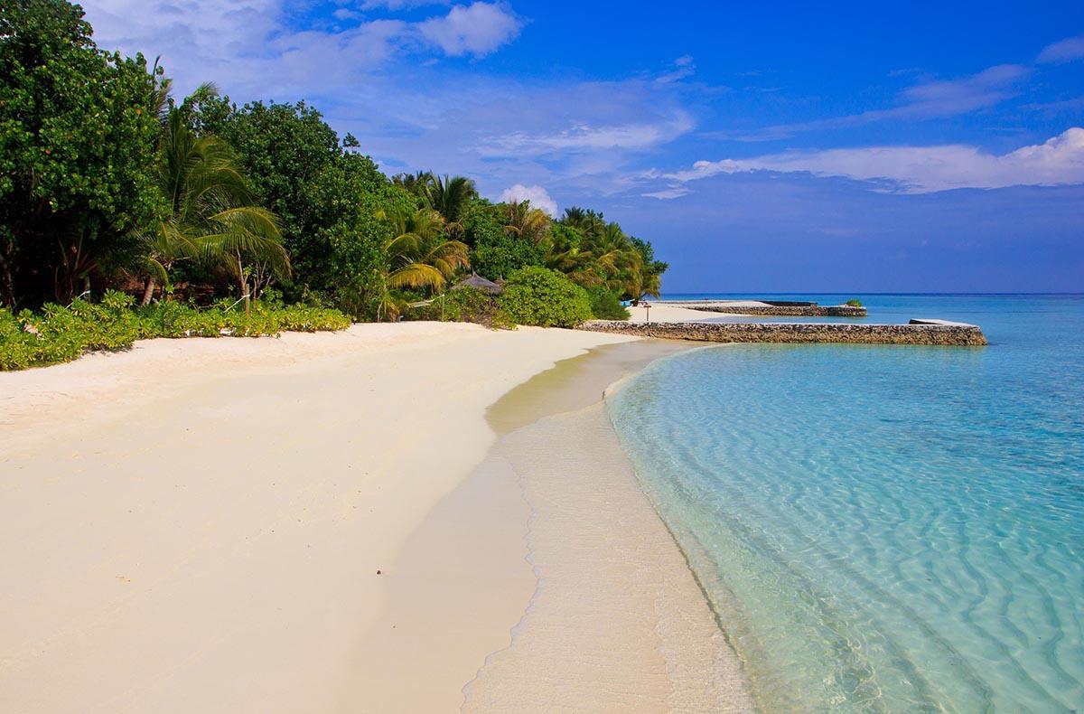 Cercasi libraio per un'isola <br />delle Maldive: ecco i requisiti <br />per il lavoro dei sogni