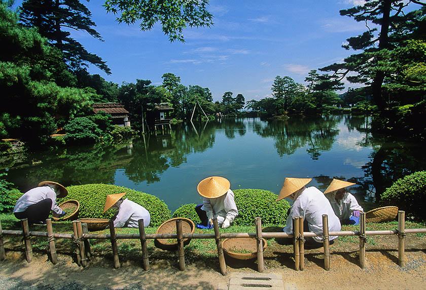 Kanazawa, Giappone, giardinieri al lavori nei giardini di Kenroku. (Foto di Daniele Pellegrini)