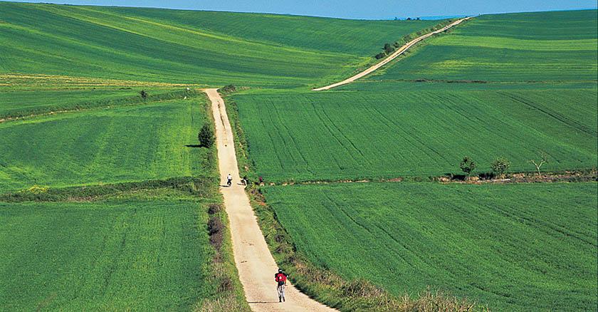 """Cammini. (Foto di Fabrizio Ardito, autore del libro Touring """"Le vie di Francesco"""")"""