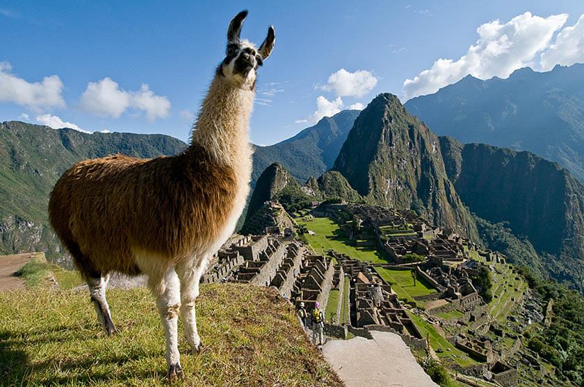 Machu Picchu, l'ultimo rifugio dell'Inca re sulle Ande peruviane, a 4.200 metri di quota. (Foto di Mario Verin).