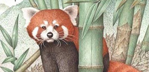 I protagonisti della natura ringraziano Franco Testa, il loro poetico illustratore