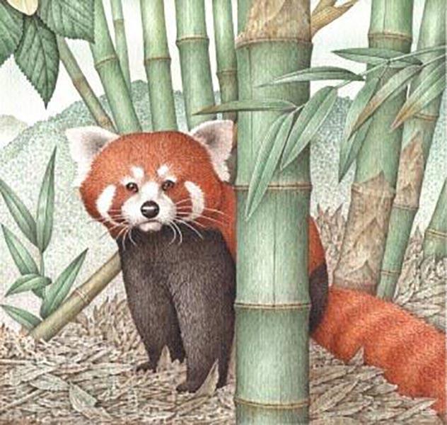 I protagonisti della natura <br />ringraziano Franco Testa, <br />il loro poetico illustratore