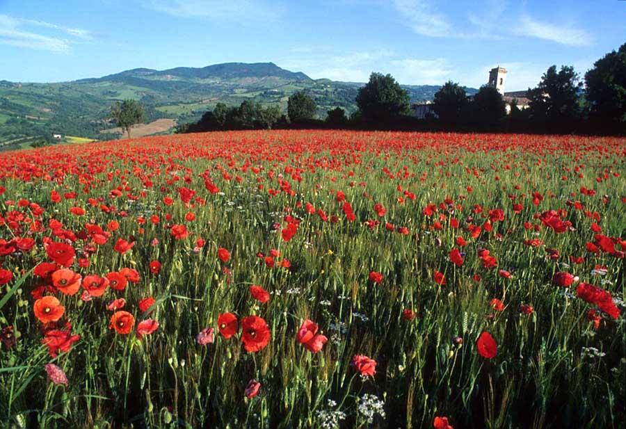 Gianni scopre la valle <br />più bella d'Italia e diventa <br />un amante dell'estetica