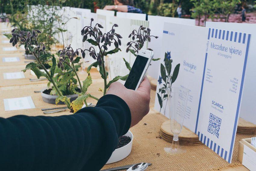 piante-euroflora-spontaneita-nel-piatto
