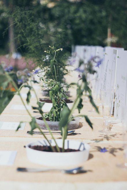 euroflora-spontaneita-nel-piatto