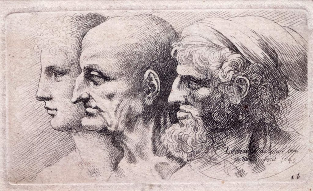 leonardo-disegnato-da-hollar
