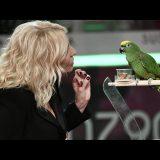 Cara Antonella Clerici, ascolta questa storia (vera) di Schatz, pappagallo siculo-tedesco