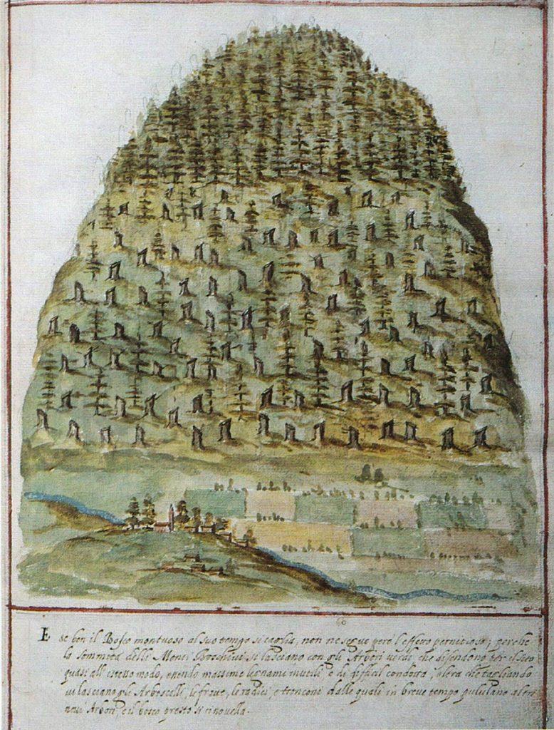 Airone Magazine - Venezia, Serenissima - Raccordo di Paulini (1608) - Montagna dopo taglio ordinato del bosco