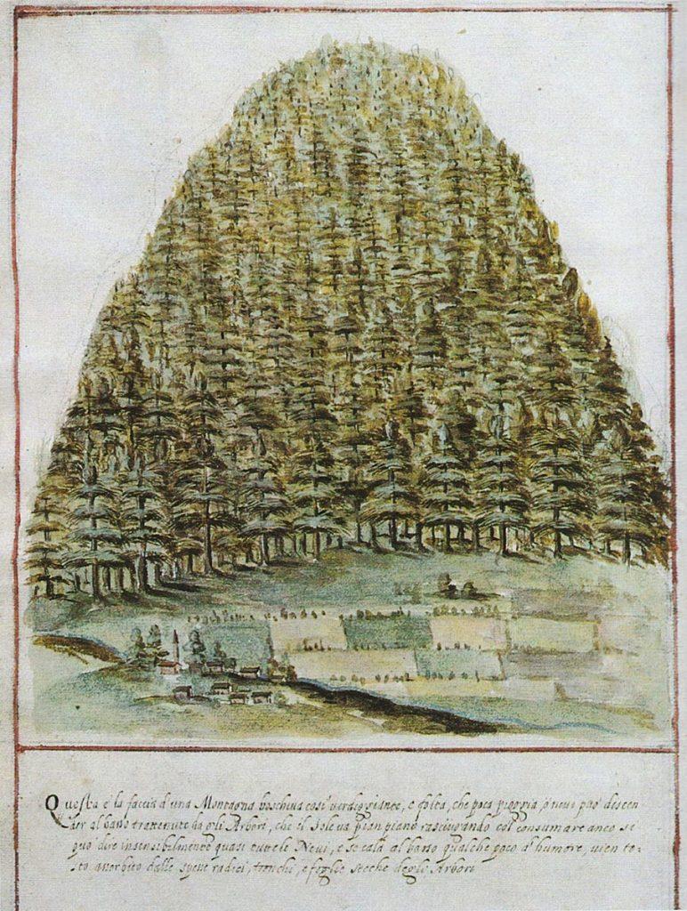 Airone Magazine - Venezia, Serenissima - Raccordo di Paulini (1608) - Montagna rivestita da alberi