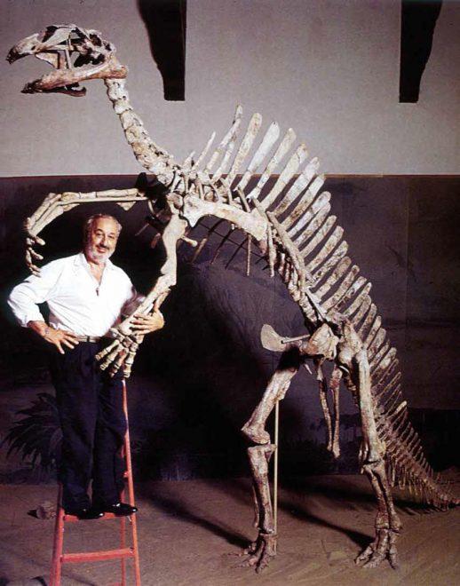 Giancarlo Ligabue con scheletro dinosauro