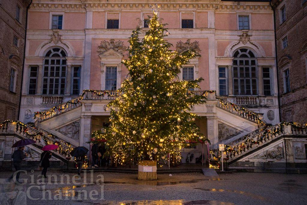 Il-grande-albero-illuminato-davanti-al-Castello-di-Govone