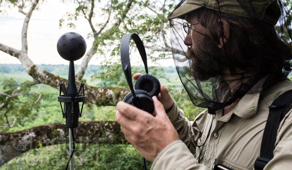 David Monacchi sistema microfoni per suoni natura Ecuador