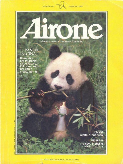 Airone-febbraio-1988