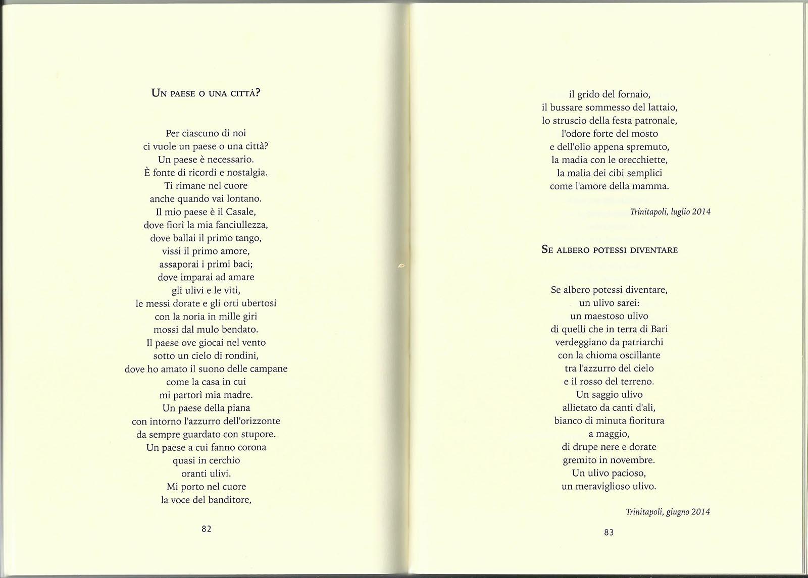 Grazia Stella Elia - Un paese o una città