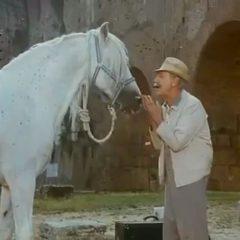 """Quando Alberto Sordi mi confessò: """"Difendo cavalli e uomini anziani dalla rottamazione"""""""
