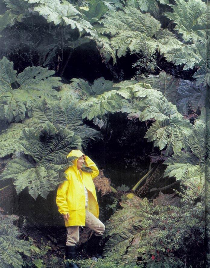 grazia-francescato-Patagonia-Carrettera-1992