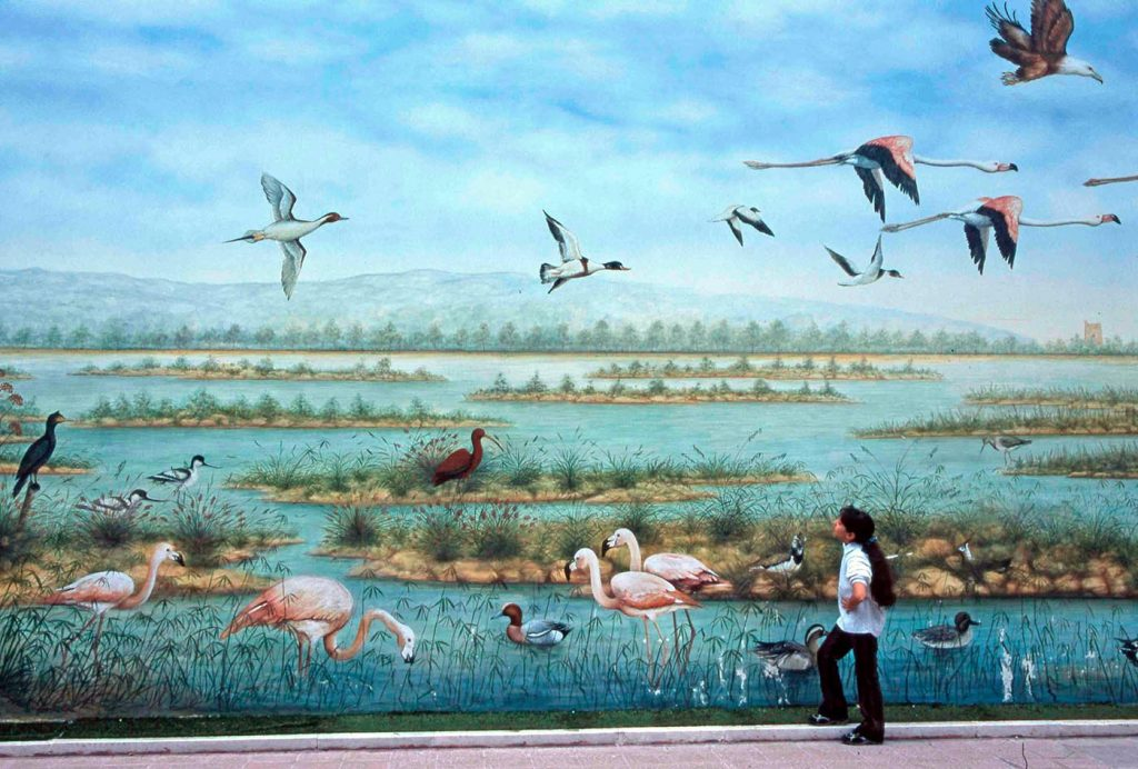 Street-Art-Trinitapoli-fauna-e-flora-saline-Savino-Russo