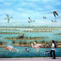 Regione Puglia apre le strade all'arte: 4 milioni di euro varati per interventi di Street Art