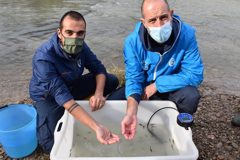 Liberazione Storioni e Anguille